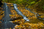 Waterfall and Autumn Leaves